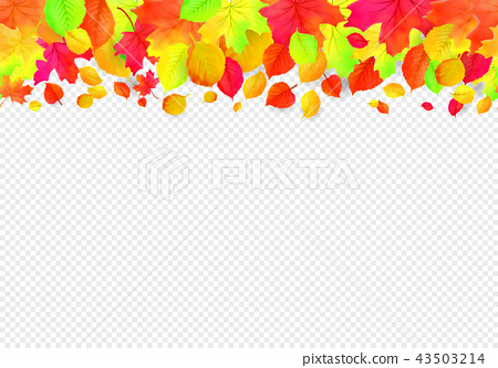 Seamless border pattern of falling autumn leaves. Vector 43503214