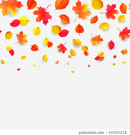 Seamless border pattern of falling autumn leaves. Vector 43503228
