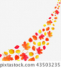 yellow leaves falling from the sky in white background- autumn season - isolated 43503235