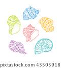 Vector colorful seashell set. Hand drawn seashell 43505918