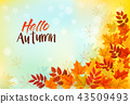 Autumn Background With Colorful Leaves. Vector 43509493