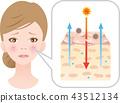 神经酰胺干燥的皮肤 43512134