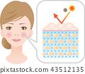 神经酰胺健康的皮肤 43512135