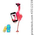bird, flamingo, smartphone 43512239