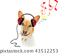 dog listening to music 43512253