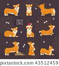 Adorable Welsh Corgi Dogs with Yellow Fur Set 43512459