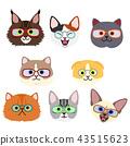 귀여운 고양이들의 얼굴 세트 안경 43515623