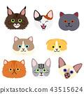 vector, vectors, cat 43515624