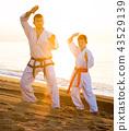 karate, beach, exercise 43529139