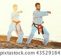 karate, beach, exercise 43529164