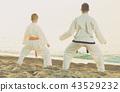 karate, beach, exercise 43529232