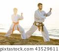 karate, beach, exercise 43529611