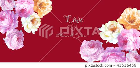 優雅的手繪玫瑰花花卉 43536459
