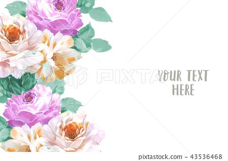優雅的手繪玫瑰花花卉 43536468