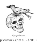 Skull and Crow For Halloween Celebration 43537013