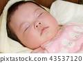 ทารก,เด็ก,เด็กๆ 43537120