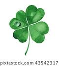Clover leaf. Four-leaf clover 1 43542317