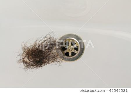 Lost hair in sink. 43543521