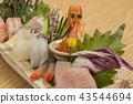 ซาชิมิ,อาหารญี่ปุ่น,ประเทศญี่ปุ่น 43544694