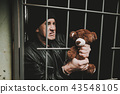 Man In Handcuffs Behind Bars In A Police Station. 43548105