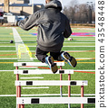 Behind view athlete jumping over hurdles on turf 43548448