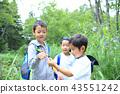 แมลงปอ,เด็ก,เด็กๆ 43551242