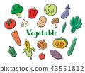 야채, 채소, 펜화 43551812
