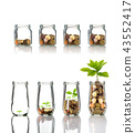 Gold coins and seed in clear bottle on white background,Business investment growth concept, active and passive income concept 43552417