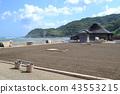 roadside, station, suzu 43553215