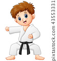 Cute little boy doing karate 43553331