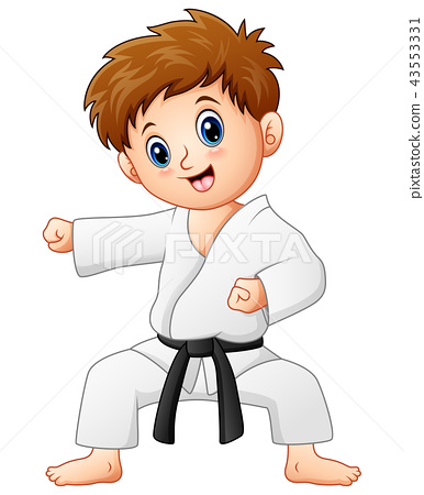 Cute little boy doing karate 43553331