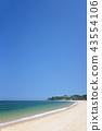 해변, 비치, 바다 43554106