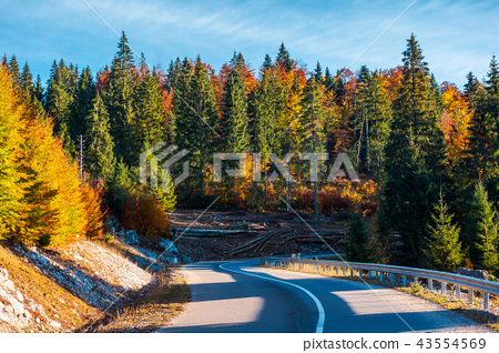 winding mountain road in autumn forest 43554569