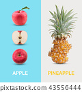 Creative layout made of red apple and pineapple. 43556444