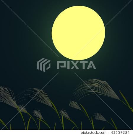 Susukino of the moonlight 43557284