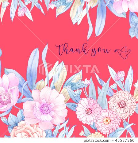優雅的手繪水彩鉛筆玫瑰花花卉 43557560