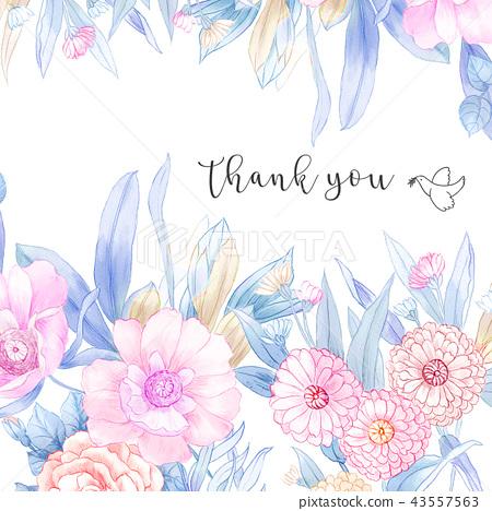 優雅的手繪水彩鉛筆玫瑰花花卉 43557563