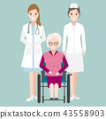 Doctor, Nurse and elderly woman on wheelchair  43558903