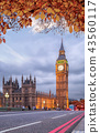Autumn leaves with Big Ben in London, England, UK 43560117