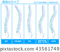 骨架類型1(藍色) 43561749