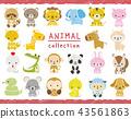 動物 一組 手寫風格 43561863