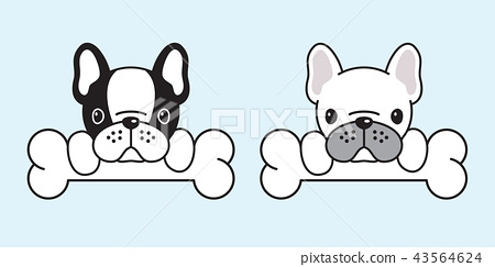 dog vector french bulldog icon logo pug dog bone 43564624