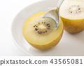 과일, 후르츠, 키위 43565081