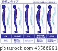 骨骼型脊柱(海軍) 43566991