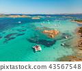 Drone aerial view of catamaran sailing boat in Maddalena Archipelago, Sardinia, Italy. 43567548