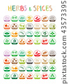 Herbs and spices icons 43573395