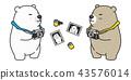bear, polar, photography 43576014