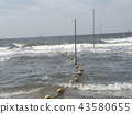 海洋 海 蓝色的水 43580655