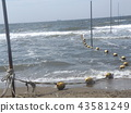 海洋 海 蓝色的水 43581249