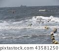 海洋 海 蓝色的水 43581250